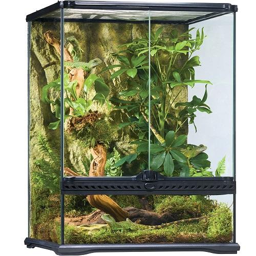 terrario tropical para camaleones