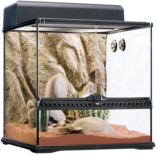 terrario para camaleones desérticos