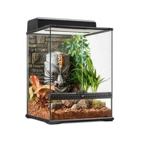 terrario con decoración interior para iguanas