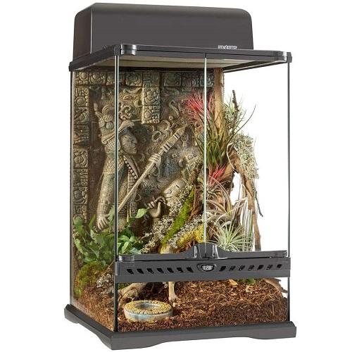 terrario para higuanas barato