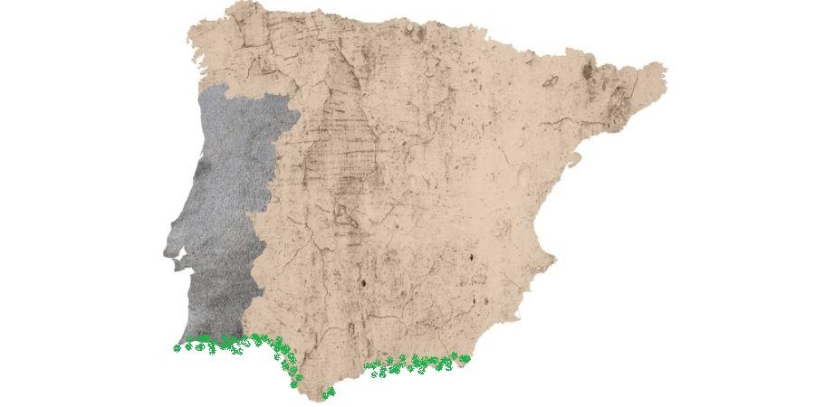 mapa del camaleon comun en españa