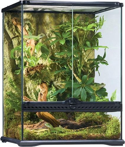 terrario para camaleones tropicales